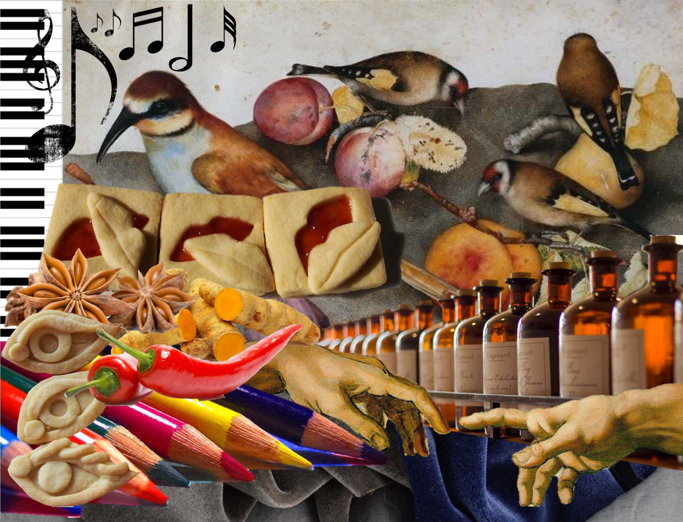 L'esperienza del gusto: i sapori e gli stimoli legati ai sensi